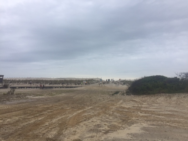 Sand dunes at Assateague