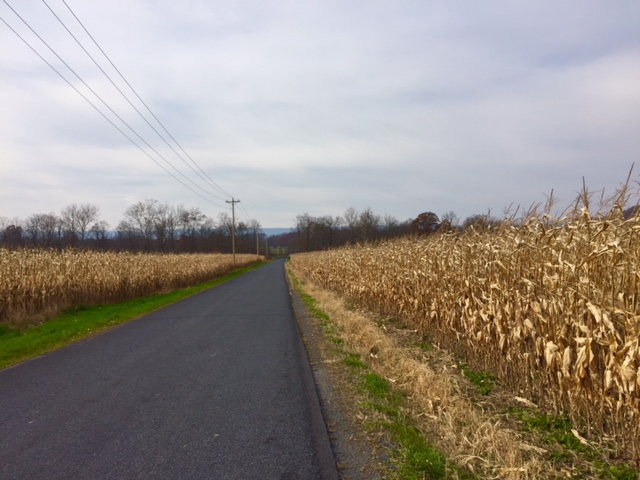 The view on Covered Bridge Road